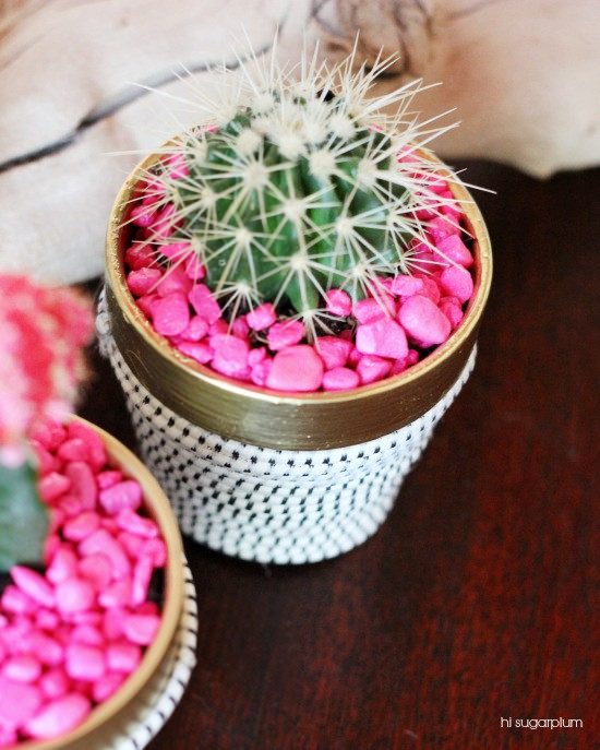 Hi Sugarplum | Succulent Pot