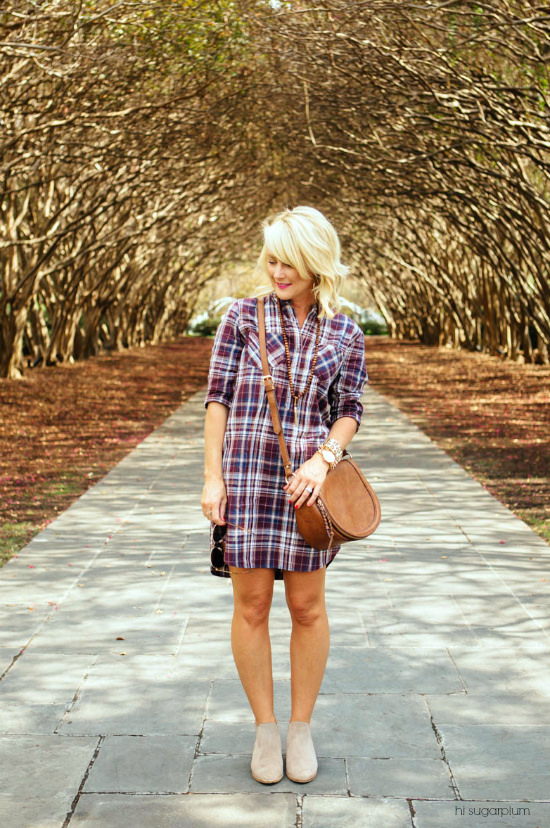 Hi Sugarplum | Plaid Shirtdress / Now & Later