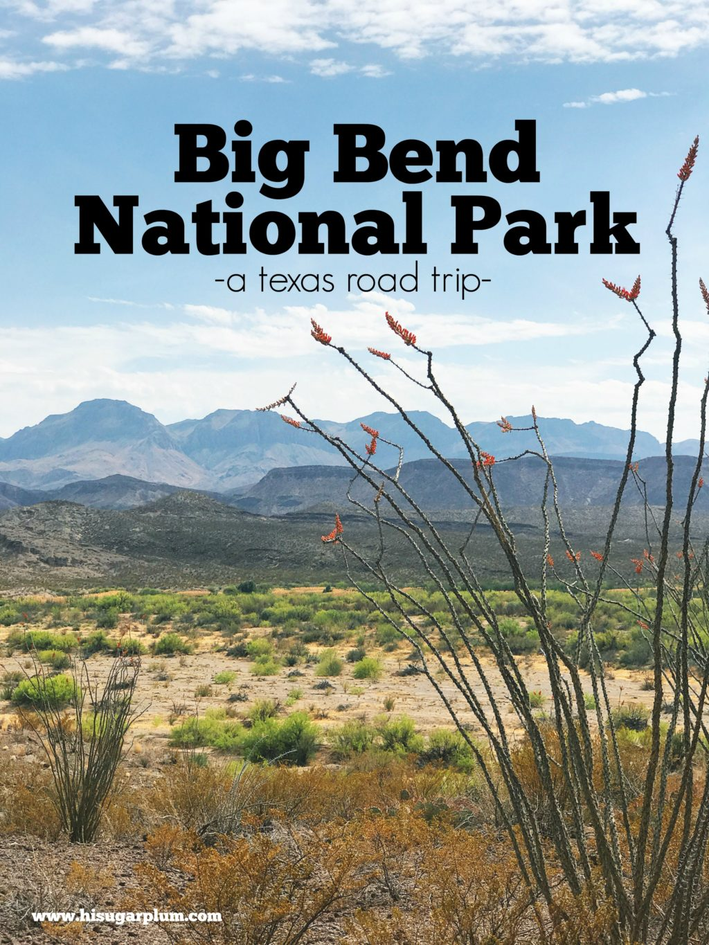 big bend national park trip recap what to do where to hike and canoe